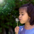 Little girl blowing dandelion Royalty Free Stock Photo