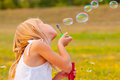 Little girl blowing soap bubbles cute while sitting on the meadow on beautiful spring day Royalty Free Stock Photos