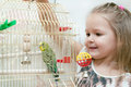 Little girl and budgie green domestic Royalty Free Stock Photography