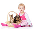 Little girl with a cat and a dog sitting in a basket. Royalty Free Stock Photo