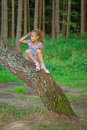 Little girl climbed on tree Royalty Free Stock Photo
