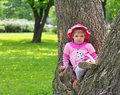 Little girl climbed on tree and sitting on it Royalty Free Stock Photo