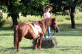 Little girl with cowboy hat and pony horse pet Stock Images