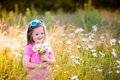 Little girl in daisy flower field Royalty Free Stock Photo