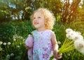 Little girl with dandelions. Stock Image