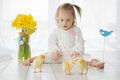 Little girl with down syndrome playing with yellow chickens baby Stock Photo