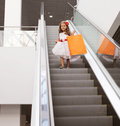 Little girl in dress with shopping bag Royalty Free Stock Photo