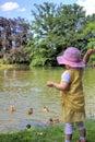 Little girl feeding ducks Royalty Free Stock Photo