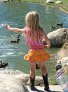 Little girl feeding ducks Royalty Free Stock Photos
