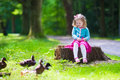 Little girl feeding ducks in a park Royalty Free Stock Photo