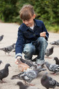 Little girl feeding pigeons Royalty Free Stock Photo