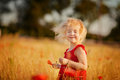 Little girl in the field cute happy with red flower yellow Royalty Free Stock Images