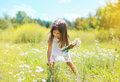 Little girl and flowers on the meadow Royalty Free Stock Photo