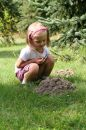 Little girl in the garden. Stock Image
