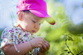 Little girl in a garden cute finding berries summer Royalty Free Stock Photography