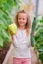 Little girl in greenhouse with pepper and cucumber in hands. Time to harvest. Big basket full of vegetables Royalty Free Stock Photo