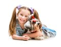Little girl is with her dog yorkshire terrier cute isolated on white Stock Photos