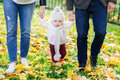 Little girl holding hands of parents, going on autumn park