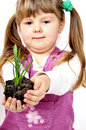 Little Girl Holding New Plant Stock Photography