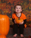 Little girl holding a pumpkin Royalty Free Stock Photography
