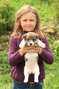 Little girl holding a puppy smiling in violet pullover brown and white Royalty Free Stock Images
