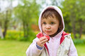 Little girl in a hoodie eating strawberries Royalty Free Stock Photo