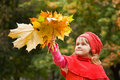 Little girl keeps leafes in park in autumn Stock Image