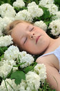 Little girl laying in flowers - snowball Royalty Free Stock Image
