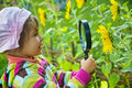 Little Girl with magnifying glass looks at flower Stock Photography