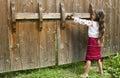 Little girl opens the gate