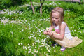 Little girl picking flowers in green glade Royalty Free Stock Photo