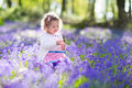 Little girl playing in bluebell flowers field Royalty Free Stock Photo