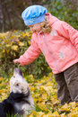 Little girl playing with dog in autumn park Royalty Free Stock Images