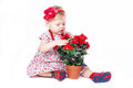 Little girl playing with a pot of flowers Royalty Free Stock Photo