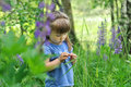 Little girl playing in sunny blooming forest. Toddler child picking lupine flowers. Kids play outdoors. Summer fun for family with Royalty Free Stock Photo
