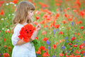 Little girl in a poppy field Royalty Free Stock Photo
