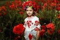 Little girl in poppy field Royalty Free Stock Photo