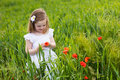 Little girl in poppy flower field Royalty Free Stock Photo