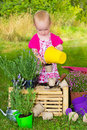 Little girl potting up seedlings in the garden intelligent standing at a wooden crate pouring soil from a yellow bucket into a Royalty Free Stock Photography