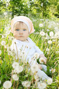 Little girl sits lawn dandelions Stock Photos