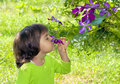 Little girl smelling the flowe happy flower on tree Royalty Free Stock Images