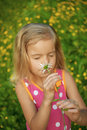 Little girl smells chamomile in red dress on green meadow Royalty Free Stock Photography