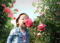 Poco chica Huele flor de rosa