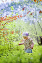 Little girl in spring forest portrait of Stock Photo