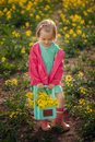 Little girl standing in spring yellow meadow. Child picking summer flowers. Children in country. Royalty Free Stock Photo