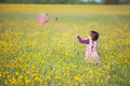 Little girl trying to catch a butterfly with a net Royalty Free Stock Photo