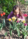 Little girl with tulips Royalty Free Stock Images