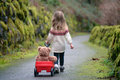 Little girl walking down the path pulling red wagon with teddy bear Royalty Free Stock Photo
