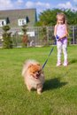 Little girl walking with her ??dog on a leash Royalty Free Stock Photo