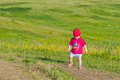 A little girl walks into the field. Royalty Free Stock Photo